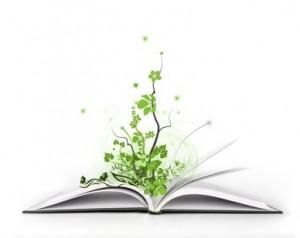 Frases Para Preservar O Meio Ambiente Texto Online